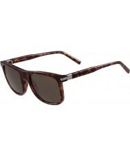 Calvin Klein Collection Erkek ck3198s havana güneş gözlüğü sarışın