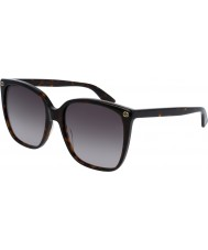 Gucci Bayanlar gg0022s 003 güneş gözlüğü