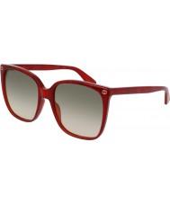 Gucci Bayanlar gg0022s 006 güneş gözlüğü