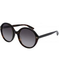 Gucci Bayanlar gg0023s 002 güneş gözlüğü