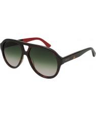 Gucci Erkekler gg0159s 004 56 güneş gözlüğü