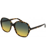 Gucci Bayanlar gg0092s 003 güneş gözlüğü