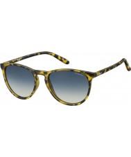 Polaroid Pld6003-n slg pw havana sarı polarize güneş gözlüğü