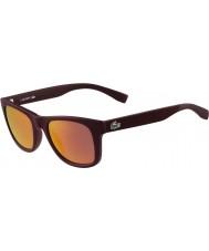 Lacoste L790s mat bordo güneş gözlüğü