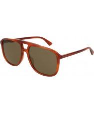 Gucci Erkekler gg0262s 002 58 58 güneş gözlüğü