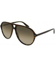 Gucci Erkekler gg0119s 002 güneş gözlüğü