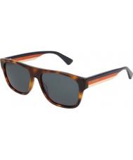 Gucci Erkek gg0341s 004 56 güneş gözlüğü